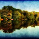 Reflections of Autumn ©  by Dawn Becker