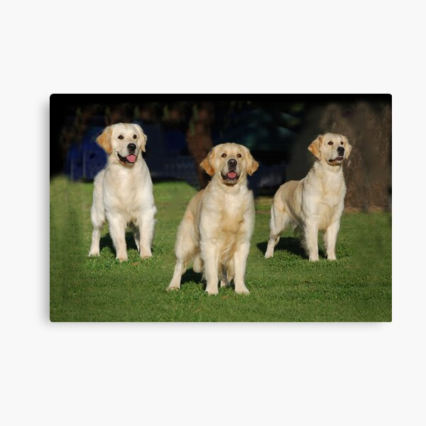 Father, Son & Daughter Canvas Print