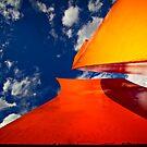Orange Reach by Bob Larson
