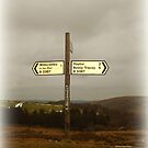 Signpost - a foggy day on Dartmoor by Charmiene Maxwell-Batten