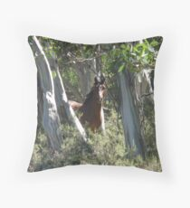 Brumby stallion in candlebarks Throw Pillow