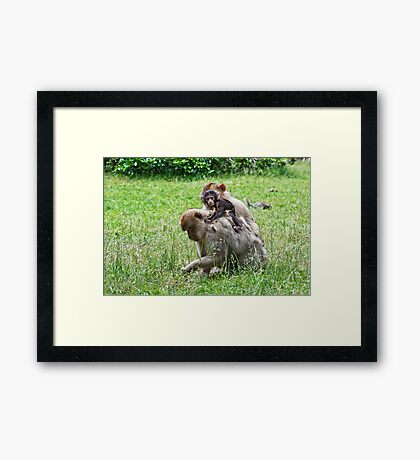 He he, this is fun Framed Print