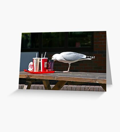 Gull-Ping it down Greeting Card