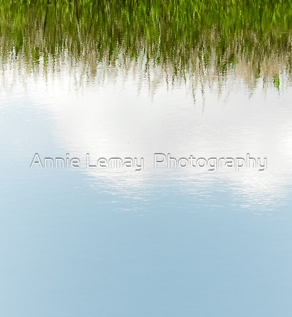 Heavenly  by Annie Lemay  Photography