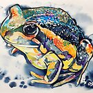 Pobblebonk Frog by Paul Oswin