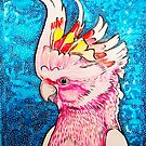 Pink Cockatoo by Paul Oswin