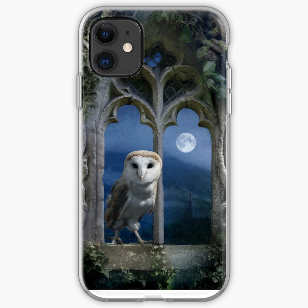 Evening Falls iPhone Case & Cover