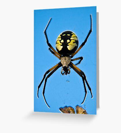 Banana Spider  Greeting Card