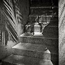 Shadows on stairs by laurentlesax