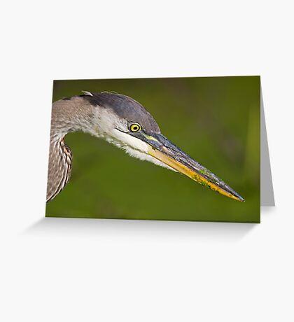 Eyeball to eyeball   Greeting Card