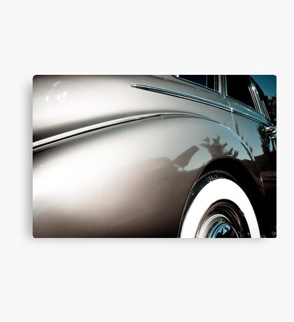 Big and Beautiful Canvas Print
