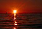 Lake Erie sunset by Marcia Rubin