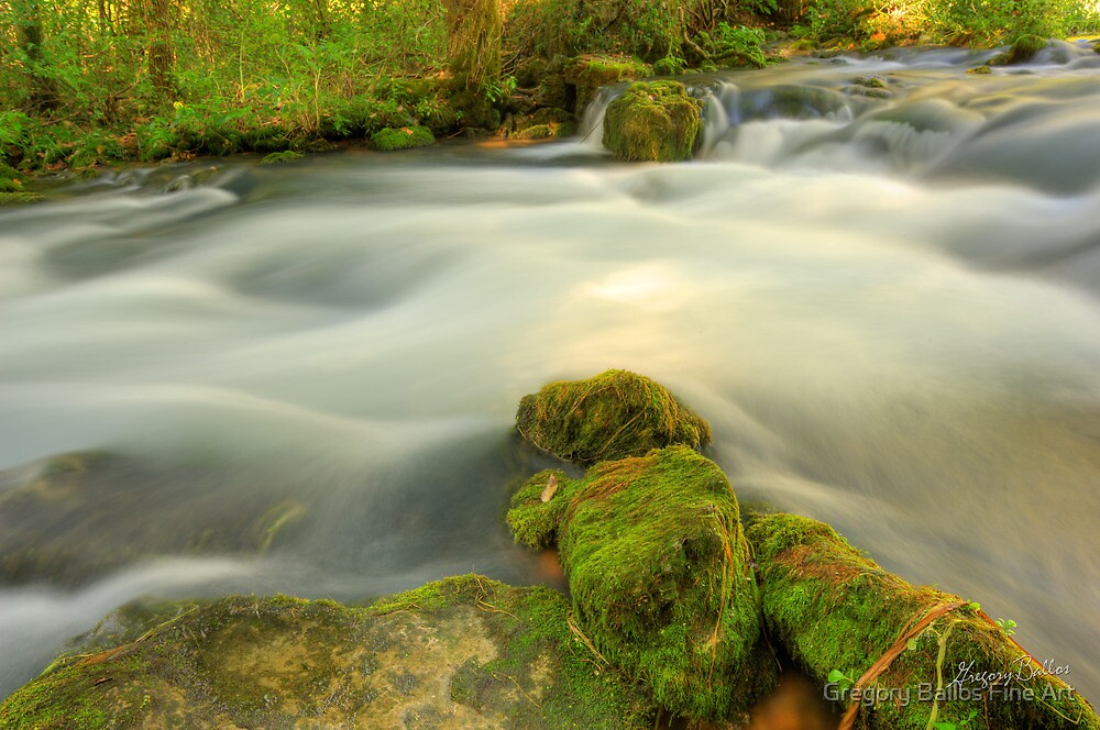 Wooded Stream by Gregory Ballos