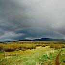 Rainbow by bberwyn