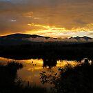 Summer Sunrise by bberwyn