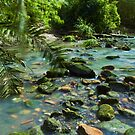 Beautiful Brook by Mark  Lucey