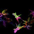 Series Birds & Collage. by Vitta