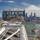 View from Singapore Flyer by Adri  Padmos