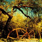 Historic Sugar Mill, Homosassa, FL ~ USA by Debbie Robbins