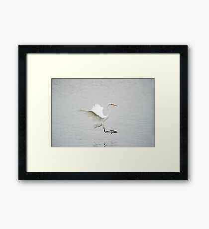 Quiet place to eat Framed Print
