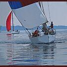Head On Sails by Karen Goad