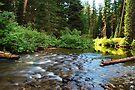 Smooth Rapids  by Tori Snow