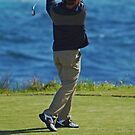 Perfect Swing by Mark  Lucey