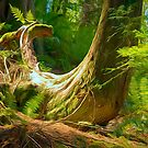 Forest Series: Whale Tail  by Tracy Riddell