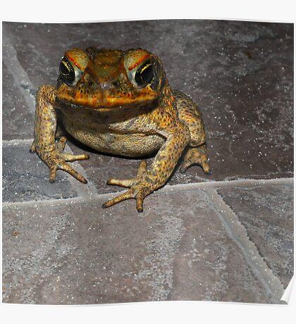 Super Frog I Poster
