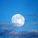 Full Moon in the Blue Sky by Alyce Taylor