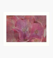 Romantic Pinks Art Print