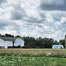 Summer on the Farm by Monnie Ryan