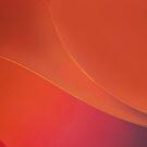 Orange Blush by Richard G Witham