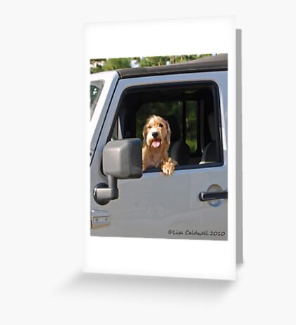 Benji Greeting Card