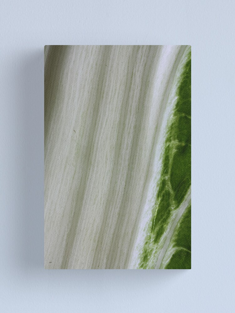 Alternate view of growing green Canvas Print