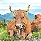 Swiss Cheesemaker by John Thurgood