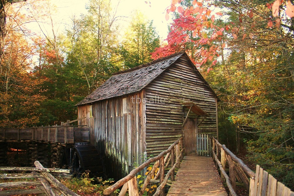 Cable Grist Mill ~ Cades Cove Tennessee by Terri~Lynn Bealle