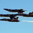 The Blue Angels by Jeff  Burns