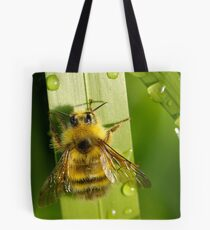 Bombus Mixtus: A Fuzzy Yellow Insect-Bear Tote Bag