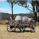Old Wooden Cart with Barrels by Sandy1949