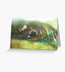 Rainbo-W-keh Greeting Card