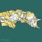 'Fluffy' Cat by Hannah Stringer (Stringer Things) by stringerthings