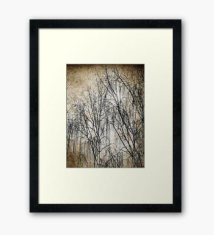 Exposure Framed Print