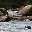 Adirondack Stream by Raider6569