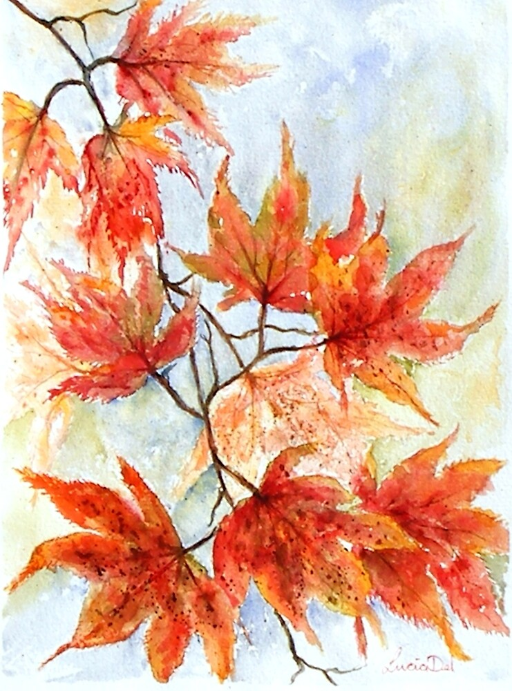Japanese Maple by LuciaM