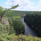 Barron Canyon - Algonquin Park by Tracy Wazny