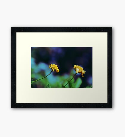 Cute Yellow Flowers Framed Print