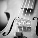 Violin  by Edward Myers