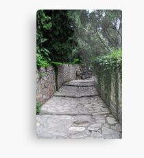 Pathway of the Summer Palace Metal Print