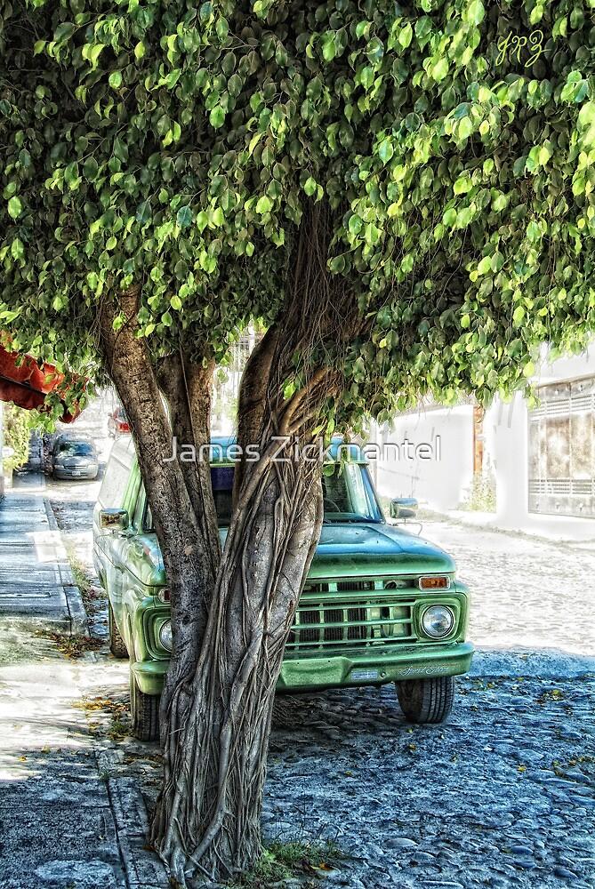 Truck & Tree (photo) by James Zickmantel
